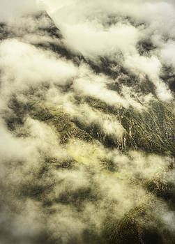 Cloud Forest by Stuart Deacon