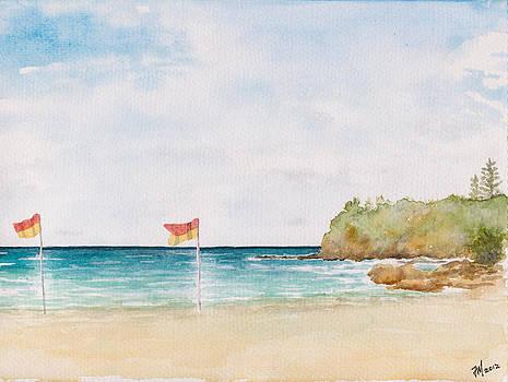 Coolum Beach by Joe Michelli