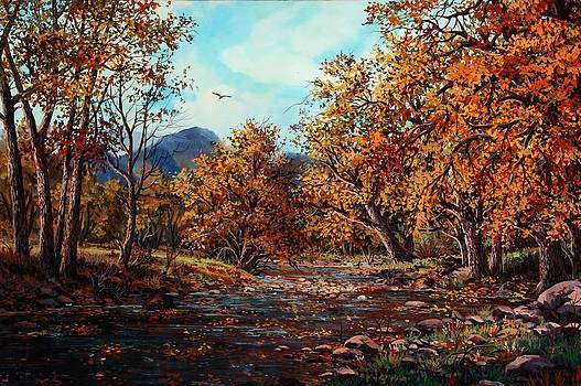 Cottonwood Creek by W  Scott Fenton