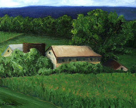 Country Farm by Cynthia Templin