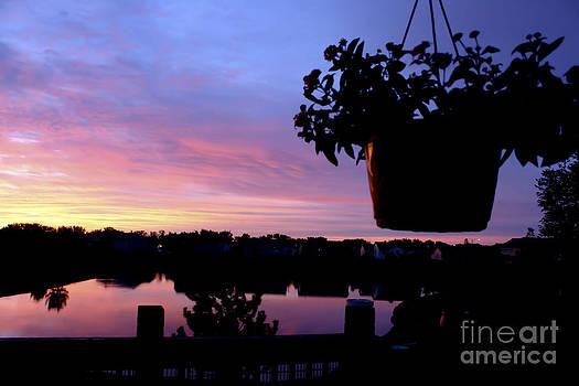 Dawn In The Neighborhood by Barbara Dean