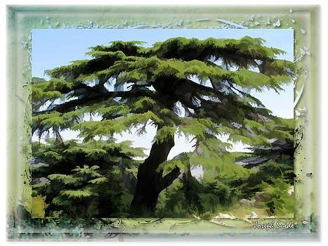 DO-00512 Cedar Forest by Digital Oil