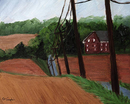 Down the Lane by Cynthia Templin