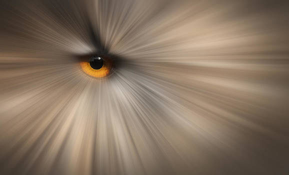 Eagle Owl Eye Abstract by Andy Astbury