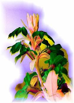 Exotic Flower by Doris Wood