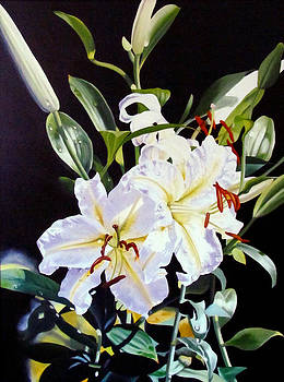 Exotic Lilies by Donna Francis