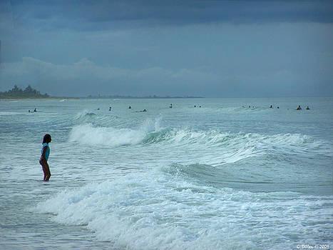 Grace Dillon - Facing the Wave
