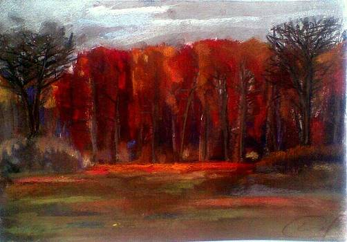 Fall 6 by Vaidos Mihai