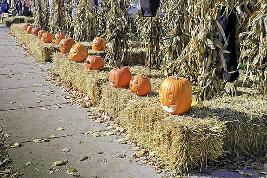 LeeAnn McLaneGoetz McLaneGoetzStudioLLCcom - Fall  Halloween on Tillson Street