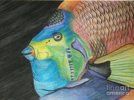 Fancy Fish by Sharon Wilkens