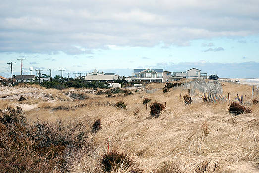Harvey Barrison - Fire Island Dunes