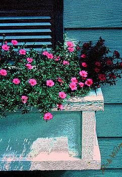 Flower Box by Bob Whitt