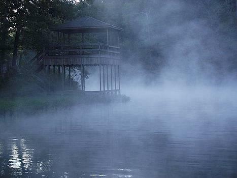 Foggy Creek by Terrill Wilson