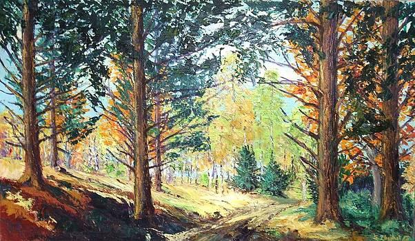 Forest 5 by Stanislav Zhejbal