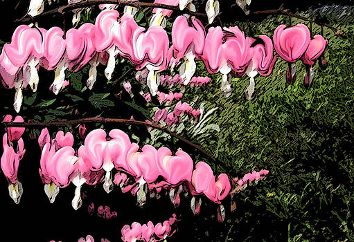 Garden of Hearts by Elisia Cosentino