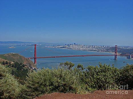 Golden Gate City by Suze Taylor