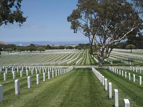 Golden Gate National Cemetery by Dany Lison
