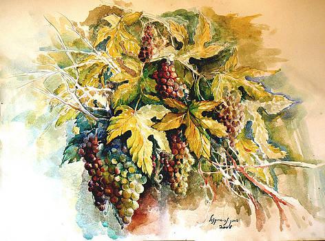 Grapevine by Baruch Neria-Kandel