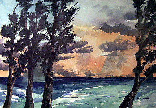 Haena by Jon Shepodd