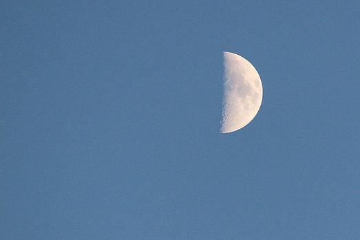 Half Moon Rising by Rita Tortorelli