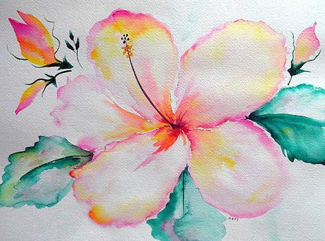 Hawaiian Hybiscus by Peggy Mars
