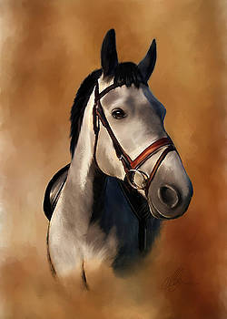 Horse Portrait by Michael Greenaway