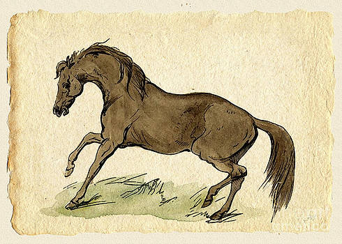 Horse Watercolor Pencil Painting by Heinz G Mielke