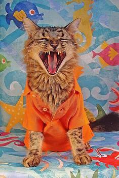 Howl by Joann Biondi
