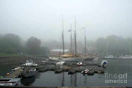In The Fog by Maria Varnalis