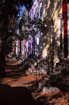 In The Shadows by Bob Whitt