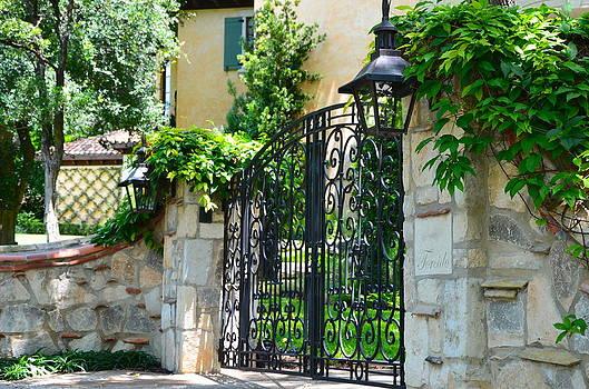 Iron Gate by Kathy Lewis