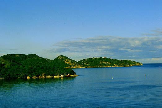 Gary Wonning - Island Paradise