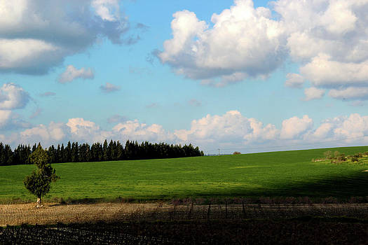 Israel's countryside by Gal Ashkenazi