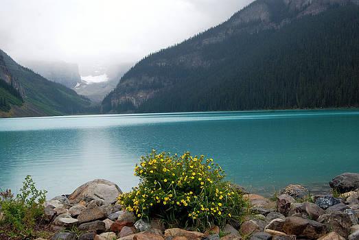 Harvey Barrison - Lake Louise