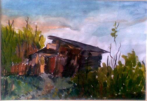 landscape in Stanceni by Vaidos Mihai