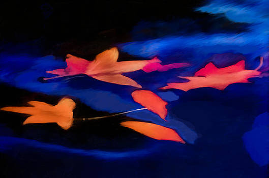 Leaves on Water by Jim Proctor