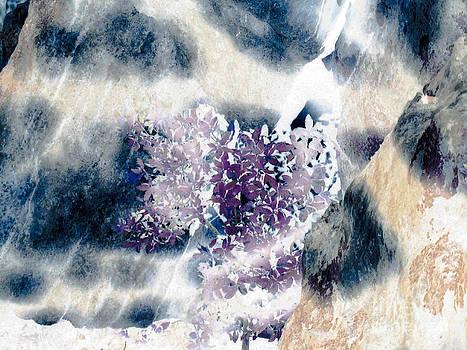 Leopard Like Spots on Rocks with Purple Foliage by Happy Walls