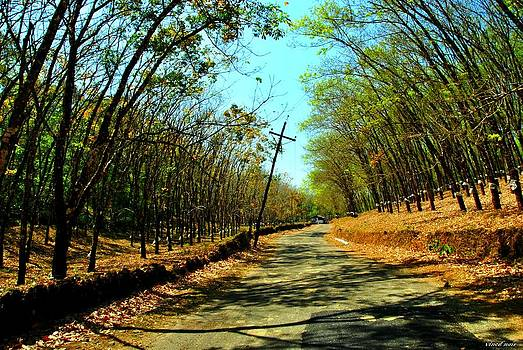 Less traveled ways by Vinod Nair