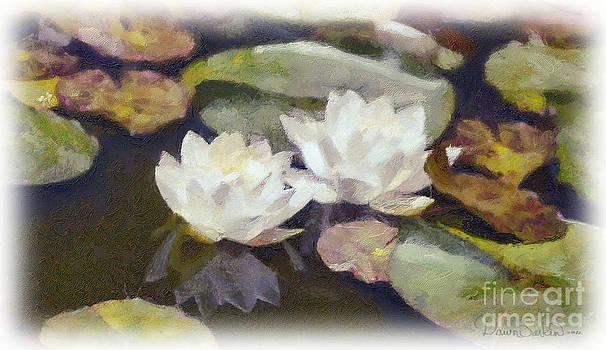 Lily Pond by Dawn Serkin