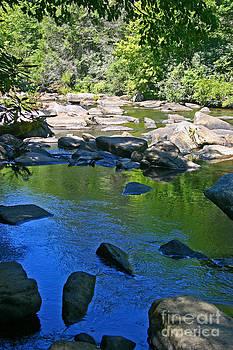 Little River Deep Pool by Beebe  Barksdale-Bruner