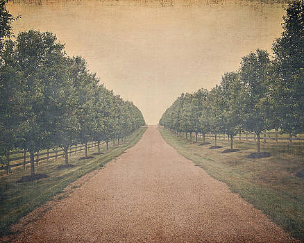 Long Road Ahead by Robin Blankenship