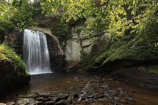 Looking Glass Falls by Doug McPherson