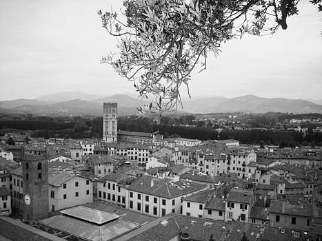 Lucca in black and white by Winston Moran