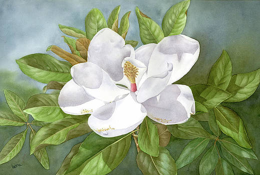 Magnolia III by Leona Jones