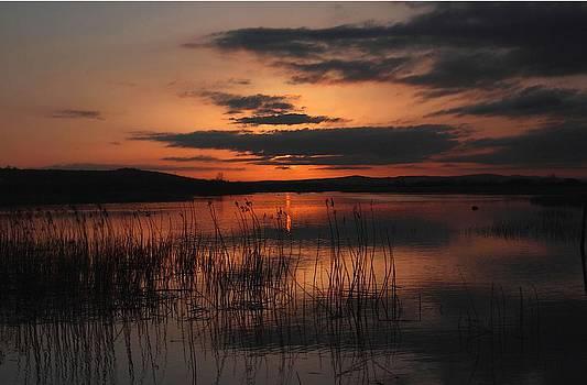 Menlo Sunset by Peter Skelton
