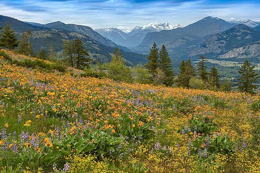 Methow Valley Spring by Bill Johnson
