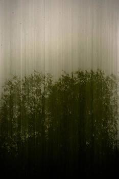 Mist by Daniel Kulinski