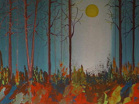Nancy Fillip - Misty Forest