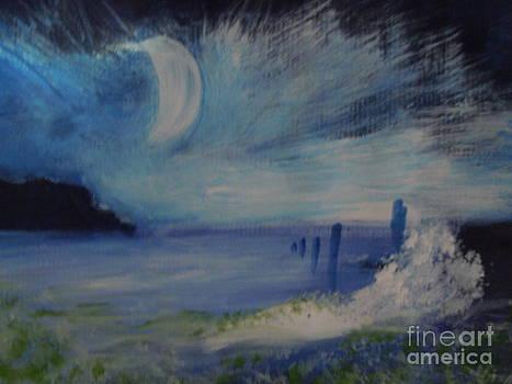 Moonlight Sonata by Lam Lam