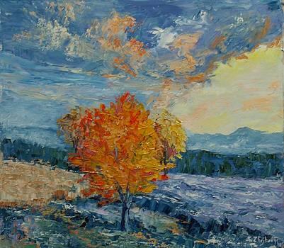Morning Frost by Stanislav Zhejbal